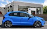 Cần bán xe Volkswagen Polo đời 2016, màu xanh lam, nhập khẩu nguyên chiếc giá 789 triệu tại Tp.HCM