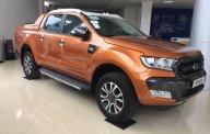 Ford Ranger Wildtrak 2.2L, 3.2L đời 2017, nhập khẩu, hỗ trợ vay 80% tại An Đô Ford - L/h: 0987987588 giá 834 triệu tại Hà Nội