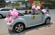 Cần bán Volkswagen New Beetle đời 2004, màu xanh lam, xe nhập giá cạnh tranh giá 517 triệu tại Bình Dương