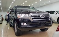 Cần bán xe Toyota Land Cruiser VX đời 2018, màu đen, xe nhập giá 4 tỷ 750 tr tại Hà Nội