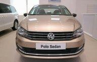 Bán ô tô Volkswagen Polo đời 2018, nhập khẩu giá 699 triệu tại Tp.HCM