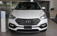 Bán Hyundai Santa Fe mới 2018 bản đặc biệt, khuyến mãi cực lớn, giá cả cạnh tranh, uy tín hàng đầu giá 1 tỷ 80 tr tại Tp.HCM