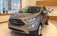Tặng gói phụ kiện 5 triệu khi mua Ford Ecosport 1.5L Titanium màu bạc 2018 tại An Đô Ford giá 648 triệu tại Hà Nội