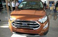 Bán ô tô Ford EcoSport 1.0 Ecoboost đời 2018, màu nâu, xe nhập giá 689 triệu tại Bắc Kạn