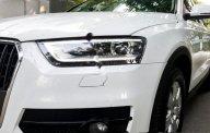 Bán Audi Q3 2.0L Quattro đời 2014, màu trắng, nhập khẩu chính chủ giá 1 tỷ 199 tr tại Tp.HCM