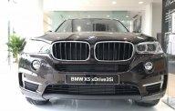Bán xe BMW X5 xDrive35i thể thao, xe 7 chỗ, có xe giao ngay giá 3 tỷ 599 tr tại Tp.HCM