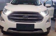 Ford Việt Nam bán xe Ecosport 2018 tháng 4/2018 đủ màu, đủ phiên bản giao ngay, LH hotline: 0941921742 giá 543 triệu tại Hà Nội