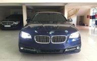 Cần bán BMW 5 Series Model 2017 màu xanh lam, nhập khẩu nguyên chiếc giá 1 tỷ 750 tr tại Hà Nội