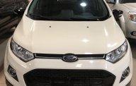 Cần bán Ford Ecosport Titanium SX 2016, màu trắng, hỗ trợ vay 80% trong 6 năm giá 560 triệu tại Lâm Đồng