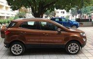 Bán Ford EcoSport Titanium năm sản xuất 2018, màu nâu tại Hưng Yên giá 689 triệu tại Hưng Yên