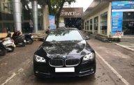 Bán BMW 5 Series 520i đời 2015, màu đen, nhập khẩu giá 1 tỷ 630 tr tại Hà Nội