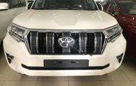 Bán ô tô Toyota Prado VX 2.7L năm sản xuất 2018, màu trắng, xe nhập giá 2 tỷ 900 tr tại Hà Nội