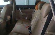 Cần bán lại xe Chevrolet Captiva LT sản xuất năm 2009, màu vàng chính chủ, giá tốt giá 325 triệu tại Tp.HCM