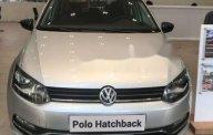 Bán Volkswagen Polo đời 2017, màu bạc, nhập khẩu, 695tr giá 695 triệu tại Tp.HCM