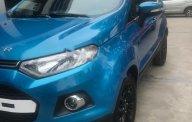 Bán Ford EcoSport Titanium 1.5L AT 2016, màu xanh lam, giá tốt giá 575 triệu tại Hà Nội