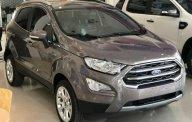 Bán xe Ford EcoSport Titanium 1.5L AT đời 2018, màu xám, giá chỉ 639 triệu giá 639 triệu tại Tp.HCM
