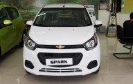 Bán Chevrolet Spark LS - Hỗ trợ đặc biệt khi chạy dịch vụ Grab giá 359 triệu tại Tp.HCM