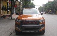 Cần bán Ford Ranger Wildtrak 3.2 sản xuất năm 2016, xe nhập, giá 810tr giá 810 triệu tại Thái Nguyên