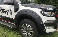 Bán Ford Ranger năm sản xuất 2015, giá tốt giá 785 triệu tại Tp.HCM