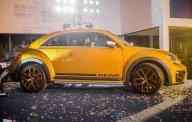 """""""Con cưng của Hitler"""" - Nàng Beetle Dune cổ điển - đặt hàng mèn đét ơi, tháng 6 có xe, số lượng rất hạn chế. giá 1 tỷ 469 tr tại Tp.HCM"""