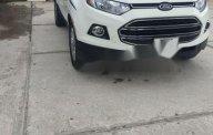 Cần bán xe Ford EcoSport đời 2016, màu trắng giá 580 triệu tại Kiên Giang