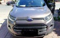 Bán Ford EcoSport Titanium sản xuất năm 2016, màu xám  giá 555 triệu tại Tp.HCM