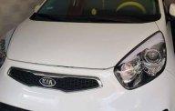 Xe cũ Kia Picanto đời 2014, màu trắng giá 300 triệu tại Tp.HCM