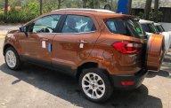 Bán xe Ford EcoSport năm sản xuất 2018 giá cạnh tranh giá 545 triệu tại Tp.HCM