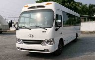 Đại lý bán xe Hyundai County mới 100% tại Đắk Lắk - trả trước 400 triệu - thủ tục nhanh giá 1 tỷ 300 tr tại Đắk Lắk
