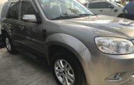 Xe Cũ Ford Escape XLT 2013 giá 579 triệu tại Cả nước