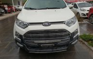 Xe Cũ Ford EcoSport Titanium 2015 giá 525 triệu tại Cả nước