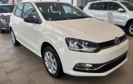 Bán Volkswagen Polo hatchback sản xuất năm 2017, nhập khẩu nguyên chiếc, giá chỉ 695 triệu giá 695 triệu tại Hà Nội