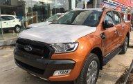 Quảng Bình Ford bán Ford Ranger Wildtrak 2.0 4WD biturbo, lh 0974286009 giá 900 triệu tại Quảng Bình