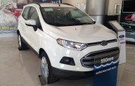 Hà Giang Ford Bán Ecosport AT, giá chỉ từ 560 triệu khuyến mãi bảo hiểm, phim cách nhiệt, LH 0974286009 giá 610 triệu tại Hà Giang
