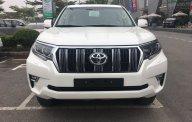 Bán Toyota Land Cruiser Prado 2.7L VX (2018) nhập khẩu, giao xe sớm, hỗ trợ vay tới 85% giá trị xe, Hotline 0987404316 giá 2 tỷ 340 tr tại Hà Nội