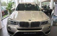 Bán xe BMW X3 xDrive20i năm 2018, màu bạc, nhập khẩu giá 1 tỷ 999 tr tại Tp.HCM