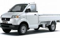 Bán xe tải Suzuki nhập khẩu, giá tốt giá 312 triệu tại Bình Dương