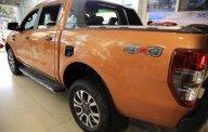 Bán xe Ford Ranger Wildtrak 2.0L 4x4 AT 2018, nhập khẩu  giá 917 triệu tại Tp.HCM