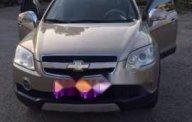Cần bán gấp Chevrolet Captiva LTZ sản xuất 2007, màu vàng, xe nhà sử dụng nên đi rất kỹ giá 317 triệu tại Tp.HCM