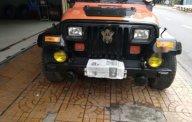 Bán Jeep Wrangler năm sản xuất 1997, nhập khẩu nguyên chiếc chính chủ giá cạnh tranh giá 220 triệu tại Sóc Trăng