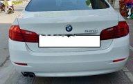 Bán ô tô BMW 5 Series 520i năm 2014, màu trắng số tự động giá 1 tỷ 440 tr tại Hà Nội