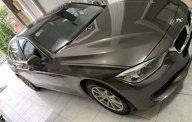 Bán xe BMW 320i mua cuối năm 2014, xe không đâm đụng ngập nước giá 900 triệu tại Tp.HCM