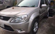 Bán ô tô Ford Escape 2.3L sản xuất 2012, màu ghi vàng giá thỏa thuận, hỗ trợ vay ngân hàng, hotline 0901267855 giá 510 triệu tại Tp.HCM