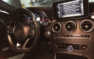 Cần bán gấp Mercedes C250 AMG năm sản xuất 2015, nhập khẩu giá 1 tỷ 350 tr tại Tp.HCM