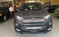 Cần bán Ford EcoSport Titanium 1.5AT sản xuất năm 2016, màu xám, 565tr giá 565 triệu tại Phú Thọ