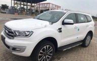 Bán ô tô Ford Everest năm 2018, màu trắng giá 1 tỷ 112 tr tại An Giang