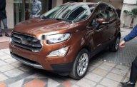 Cần bán xe Ford EcoSport đời 2018, màu nâu, giá tốt  giá Giá thỏa thuận tại Hà Nội