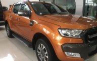 Cần bán Ford Ranger Wildtrak năm 2015, màu nâu, nhập khẩu nguyên chiếc, giá tốt giá 805 triệu tại Tp.HCM