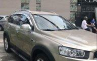 Bán Captiva 2013 số tự động, vàng cát giá 509 triệu tại Tp.HCM