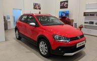 Bán Polo Cross Volkswagen nhập khẩu nguyên chiếc - đăng ký lái thử xe vui lòng LH 0933.689.294 giá 725 triệu tại Tp.HCM